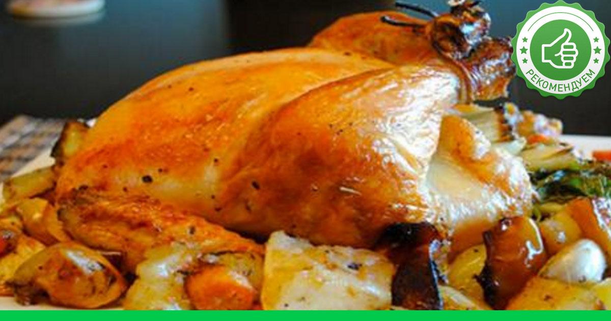 Что приготовить из домашней курицы в духовке