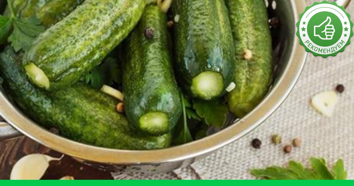 Рецепт малосольных огурцов быстрого приготовления в мешочке
