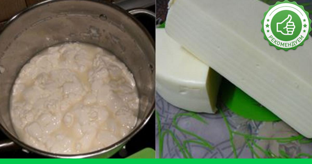Рецепт приготовления сулугуни в домашних условиях
